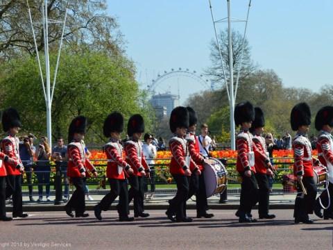 Смена караула у Букингемского дворца: гвардейцы Королевы