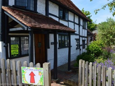 Открывая калитку в английский сад: Shere Open Gardens 2018