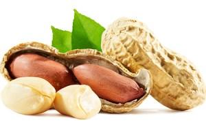 Erdnüsse - Superfood für die Gefässe