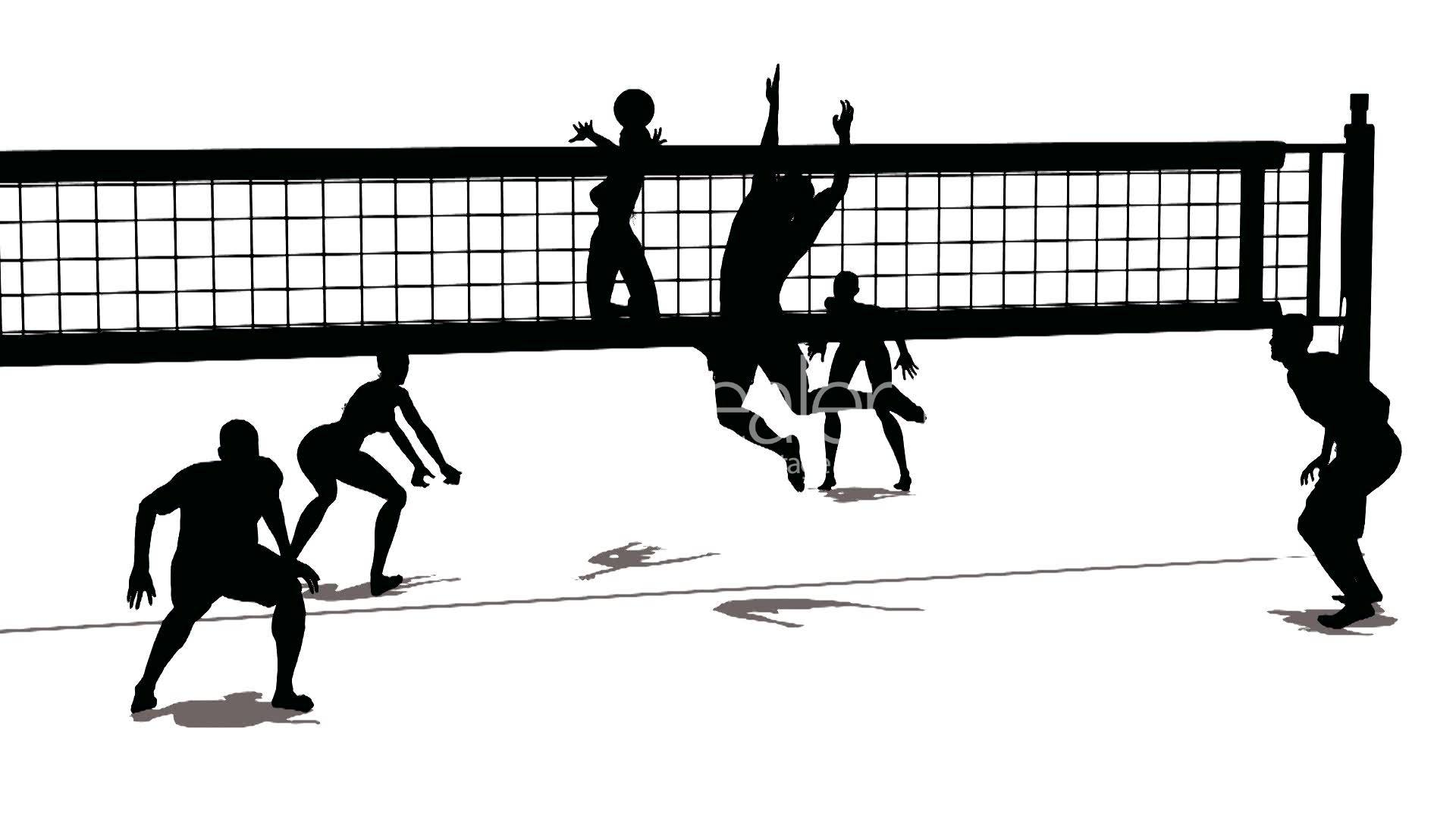 Volley Sport Categories Le Blog Officiel De La Ville
