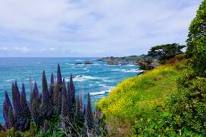 California Coast in Mendocino