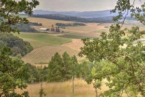 rural Oregon landscape, Willamette Valley