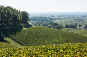The wine growing region and town of St Emilion France