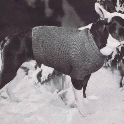 Knitted Dog Coat Pattern