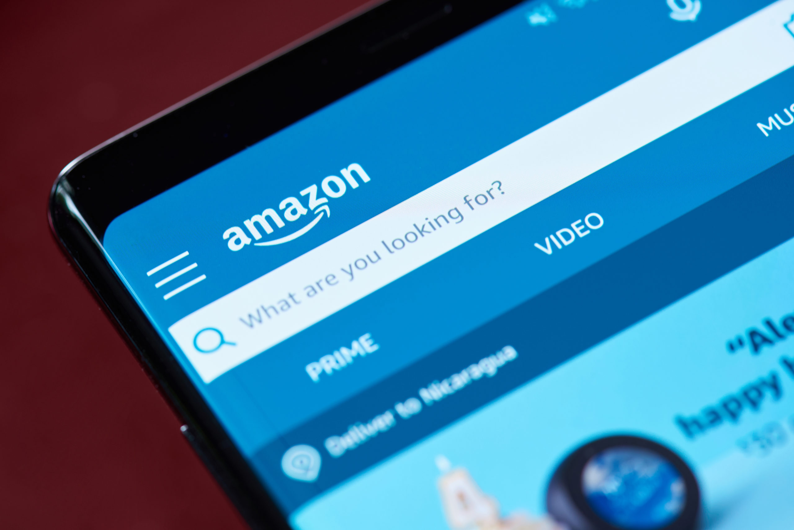 Amazon is a search engine, so make sure your next product has significant search volume.