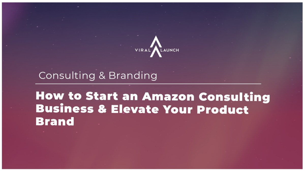 Follow The Data: How To Start An Amazon Consulting Business & Elevate Your Brand