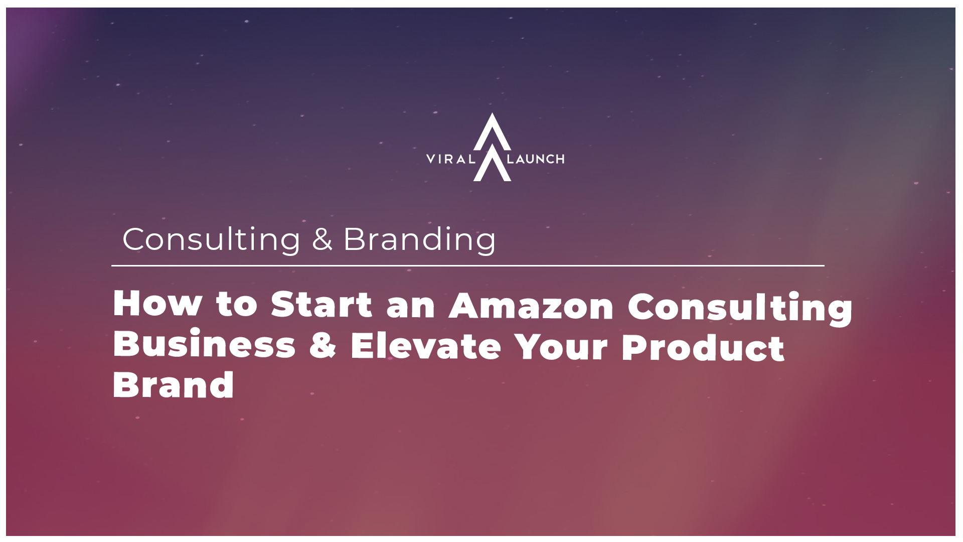Spacy graphic on how to start an Amazon consulting business