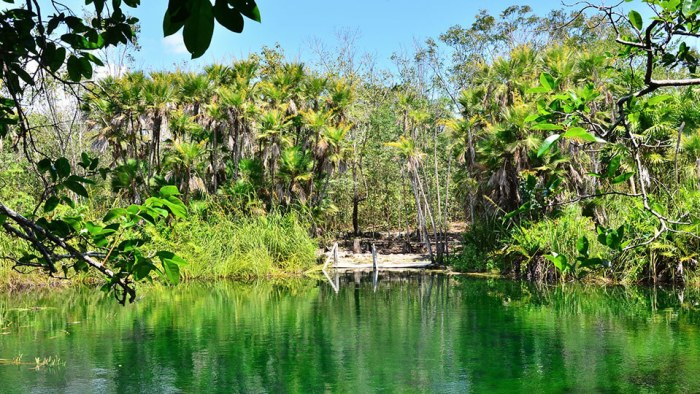 Cenote Cristal cerca de Tulum