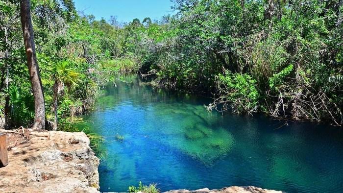 Cenote Escondido al Sur de Tulum