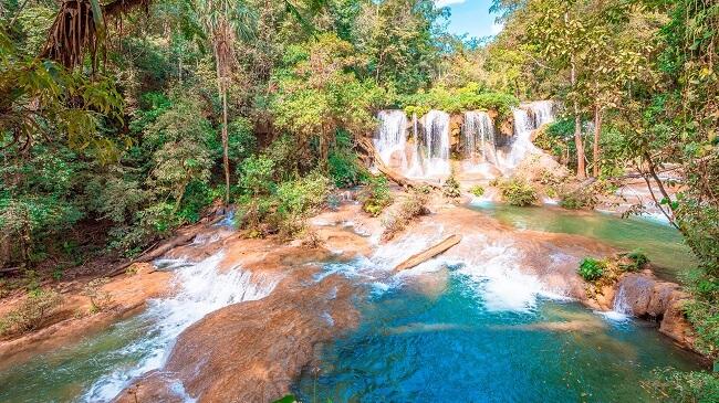 Paisaje selva Lacandona