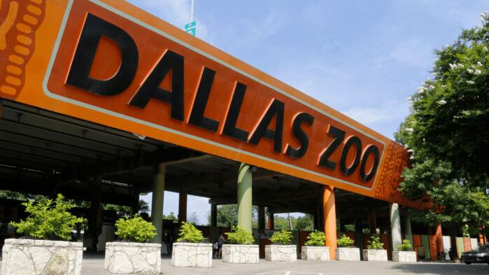 zoologico de Dallas