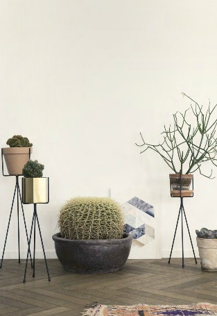 Pricky cacti and a succulent planted in raised potters by Ferm Living's new Autumn-Winter collection