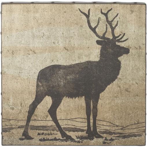 A Deer via Dot and Bo