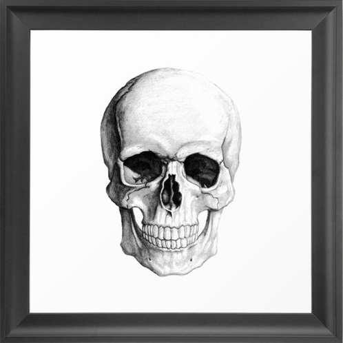 A Skull via Dot and Bo