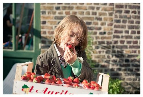 Aardbeien uit Beervelde