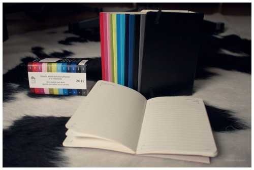 Color a Month Daily Planner