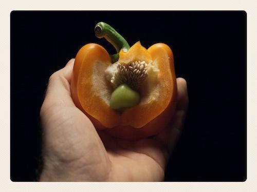 Paprika door Bruno Bollaert