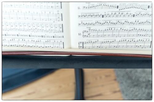 Cello door Bruno Bollaert