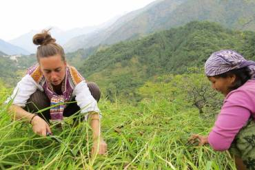 Aggriculture min Volunteer In Environment   The Ultimate Guide