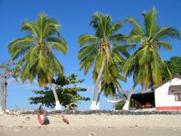 madagascarfeat Volunteer in Madagascar | The Ultimate Guide
