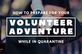 Copy of Copy of How to Save the Leatherback Sea Turtle How To Prepare for Your Volunteer Adventure during Quarantine