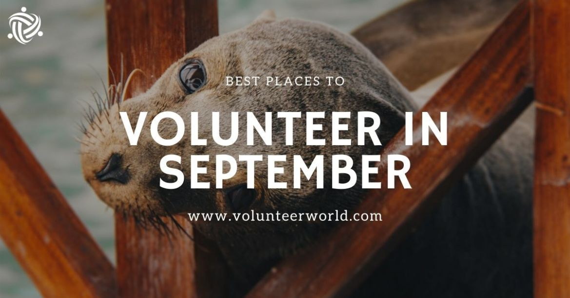 Best Places to Volunteer in September min 1 Best Places to Volunteer in September [2021]