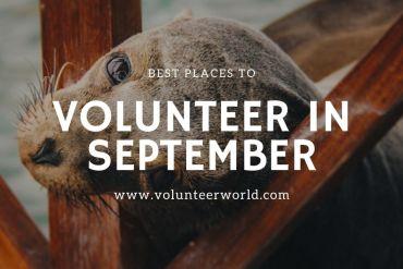 Best Places to Volunteer in September min 1 Best Places to Volunteer in September [2021]