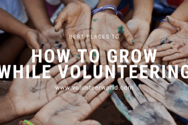 enriching volunteer experience How to Have an Enriching Experience While Volunteering 🌎