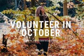imgonline com ua resize vIJRQWryB7EFC2 Best Places to Volunteer in October [2021]