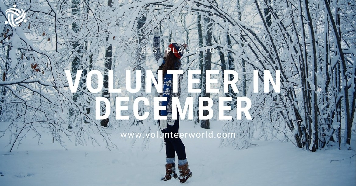 Blogpost feat image.v1 1 Best Places to Volunteer in December [2021]