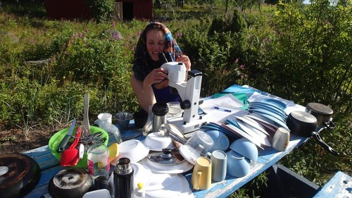 No, Niina is not checking if the dishes are properly cleaned. Sometimes microscopy is just more fun outdoors. (Photo: Metsähallitus / Janos Honkonen)
