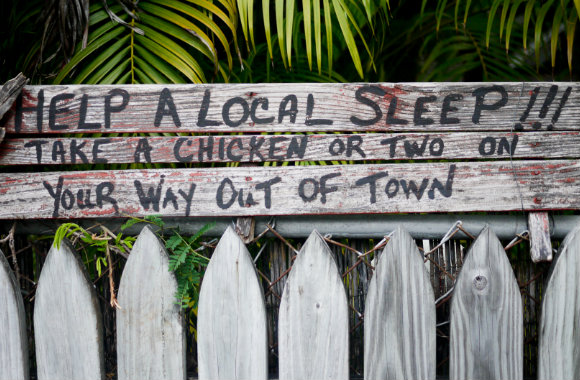 key-west-sign-by-shannon-o-donnell-of-a-little-adrift-bp