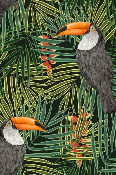 The Graduate Collection - Toucans in tree