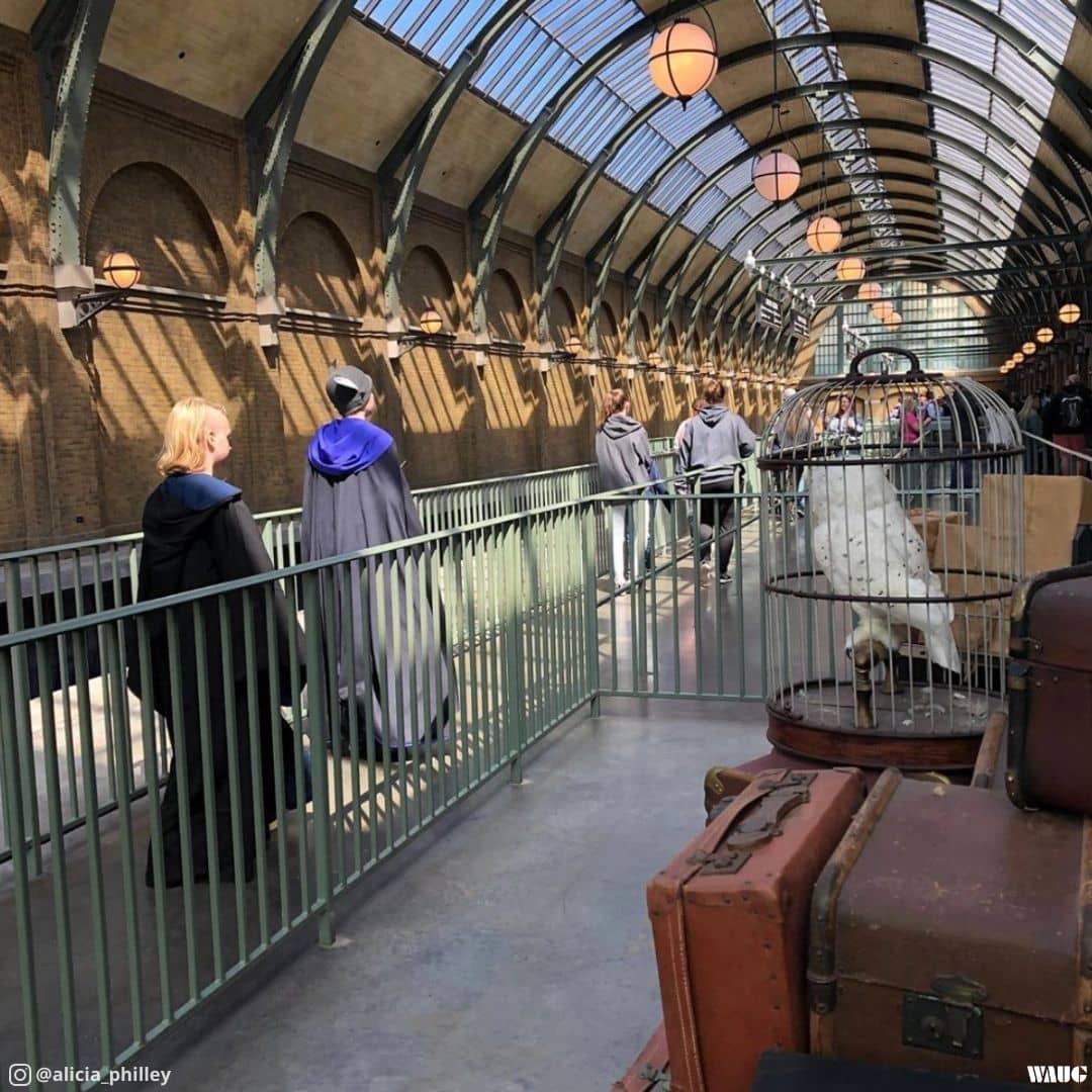 hogwarts-express-universal-studios-florida-orlando
