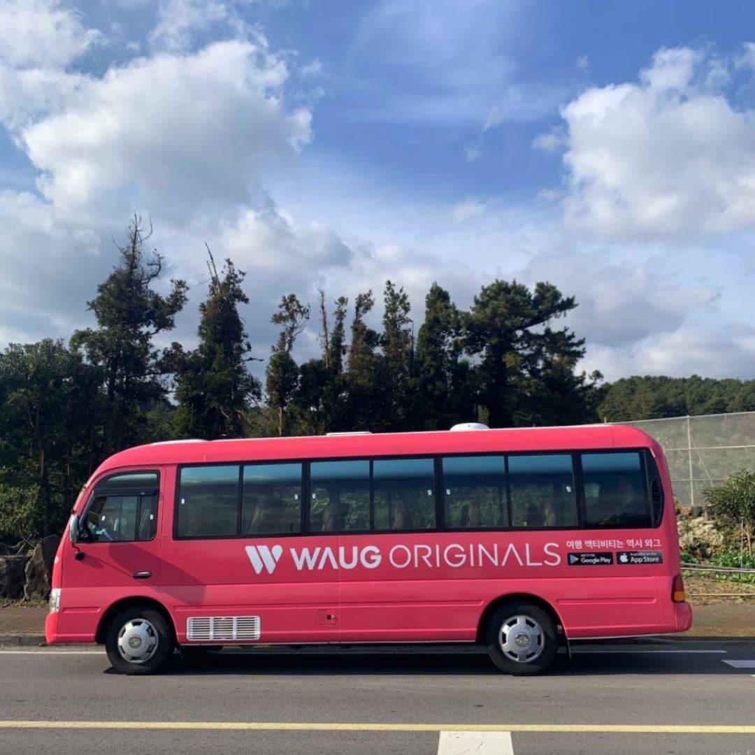 WAUG Pink Jeju Bus Tour Review