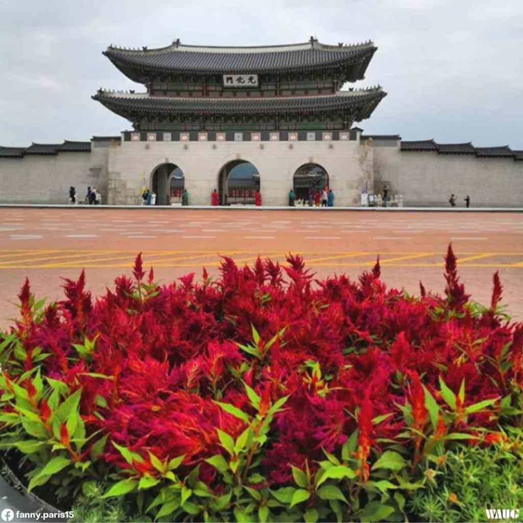 gyeongbokgung-palace-autumn-fall-1