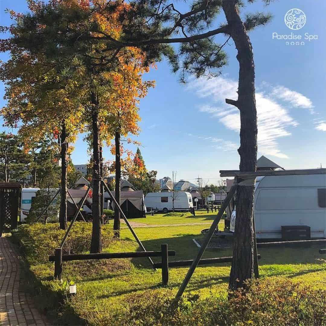 paradise-spa-dogo-caravan-glamping