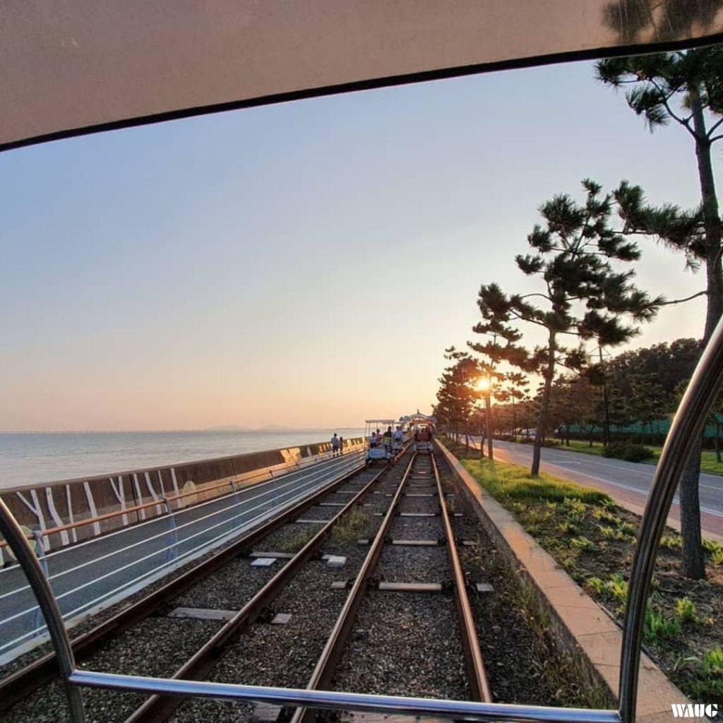 yeongjong-seaside-rail-bike-autumn