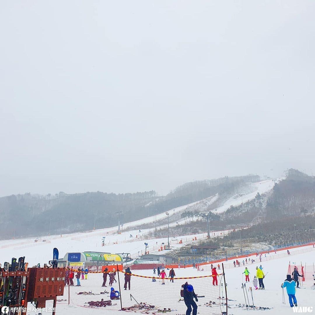 alpensia-ski-resort-season-pass