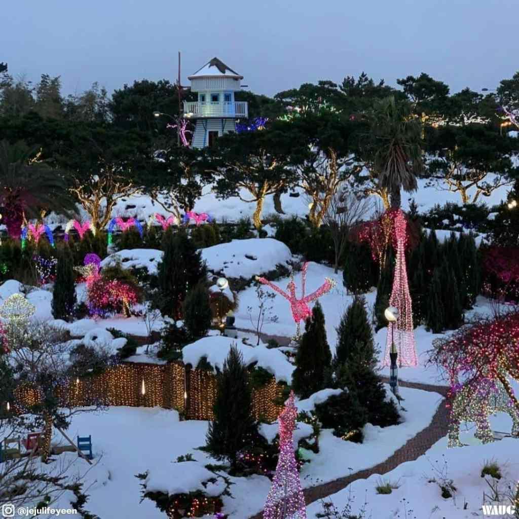 jeju-herb-dongsan-winter-fall-autumn