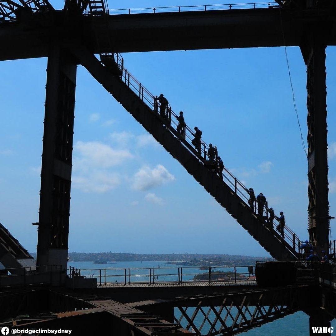 bridgeclimb sydney what to wear