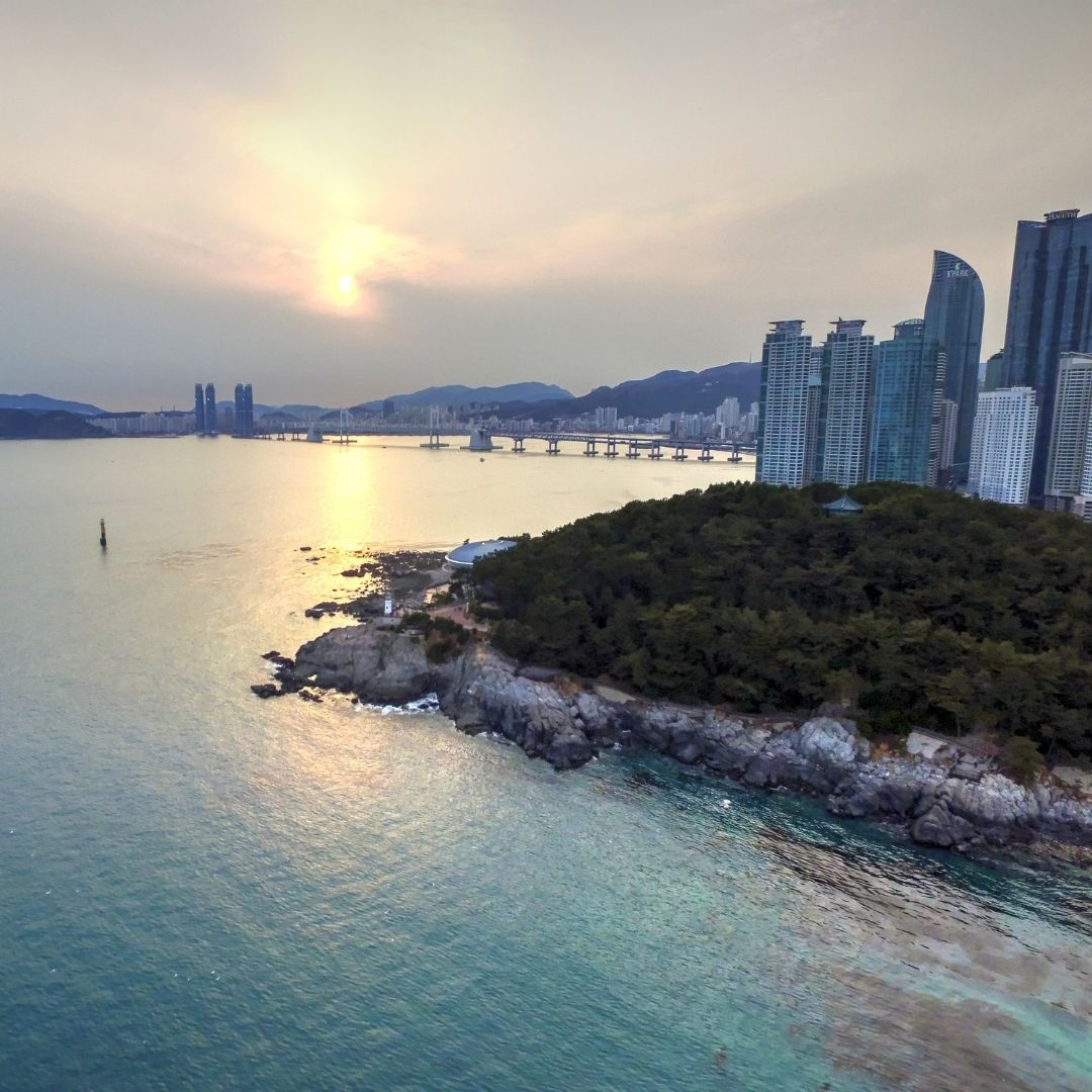 busan-yacht-tours-schedule
