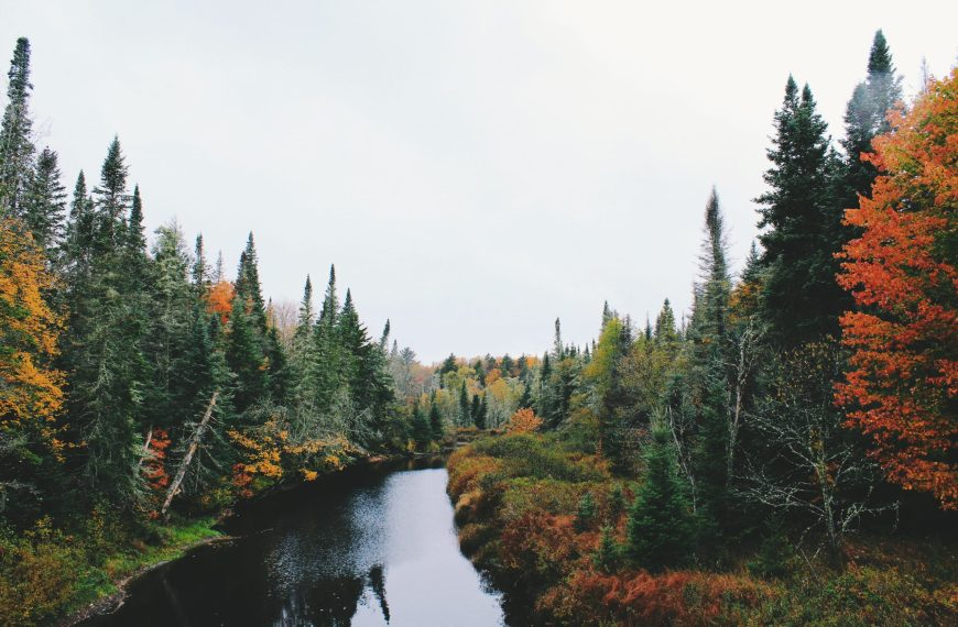 Fall Foliage Getaways to Book Now