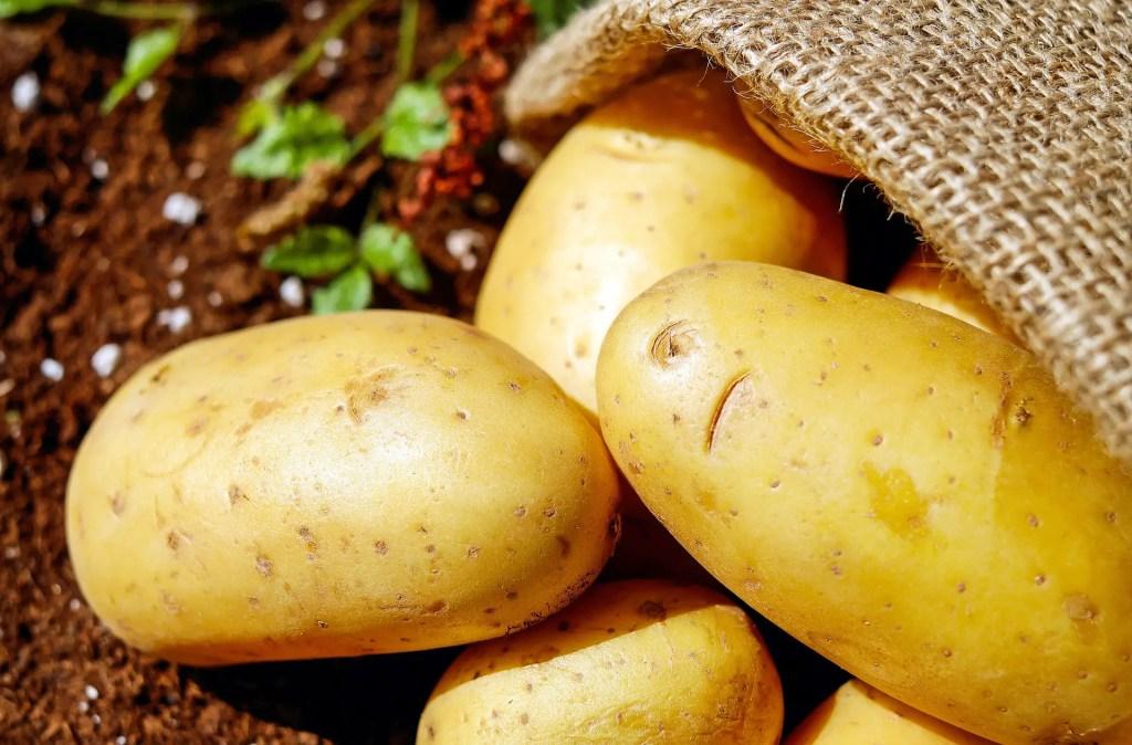 potatoes to make flour