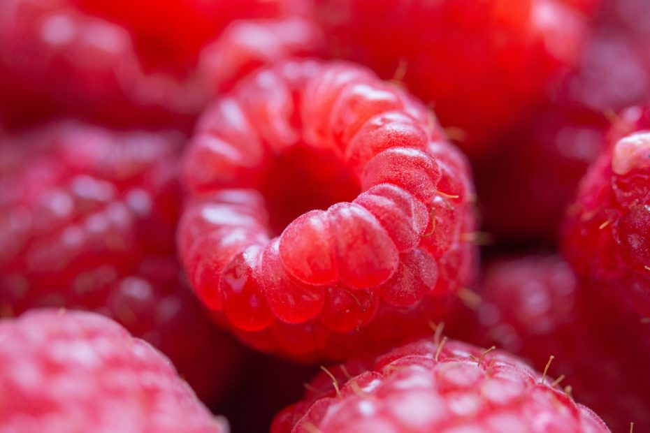 Are Raspberries Good For Weight Loss Or Fattening