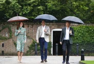 Princes William, Harry honor Diana's charity work
