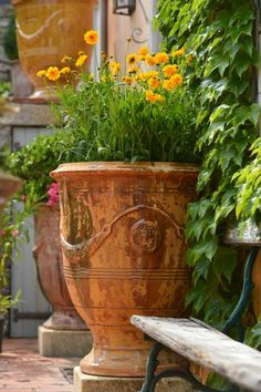Anduze Pots Yellow Flowers