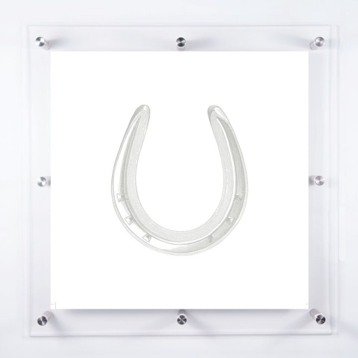 acrylic-framed-horseshoe-wall-art-print-3