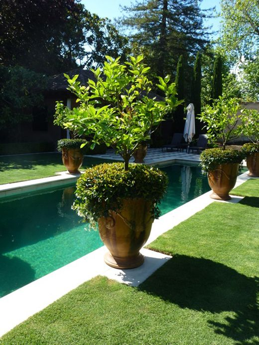 anduze pots by pool