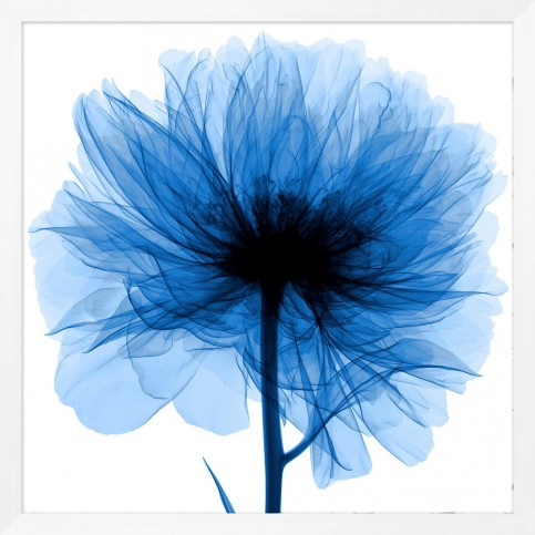 hand_picked_blue_flower_framed_wall_art_1
